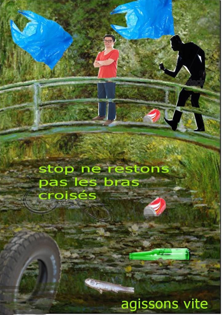 Arts plastiques 4eme et écologie (Claude Monet, Le pont japonais)