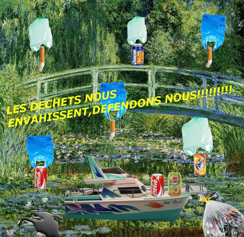 Arts plastiques 4eme et écologie (Pierre et Peio)