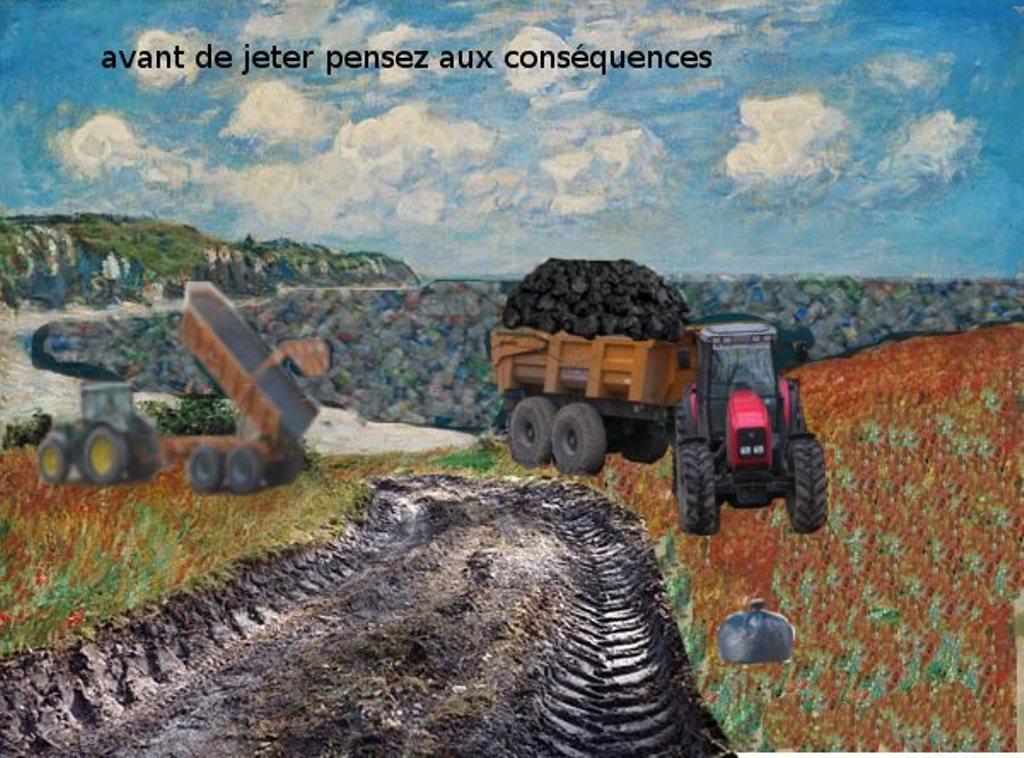 Arts plastiques 4eme et écologie (Xabi)