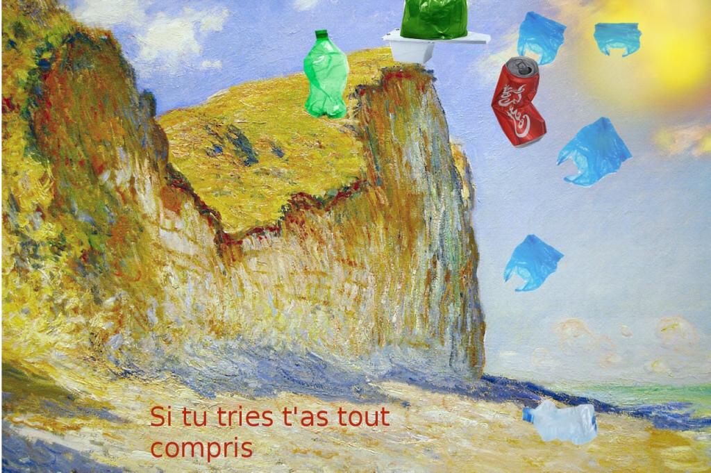 Arts plastiques 4eme et écologie (Arthur et Antton)