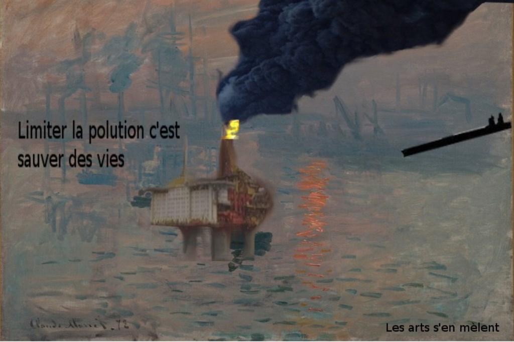Arts plastiques 4eme sur l\'écologie (Benoît et Titouan)
