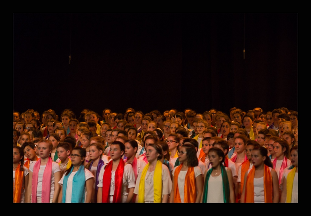 spectacle-concert-quintaou-2016-32