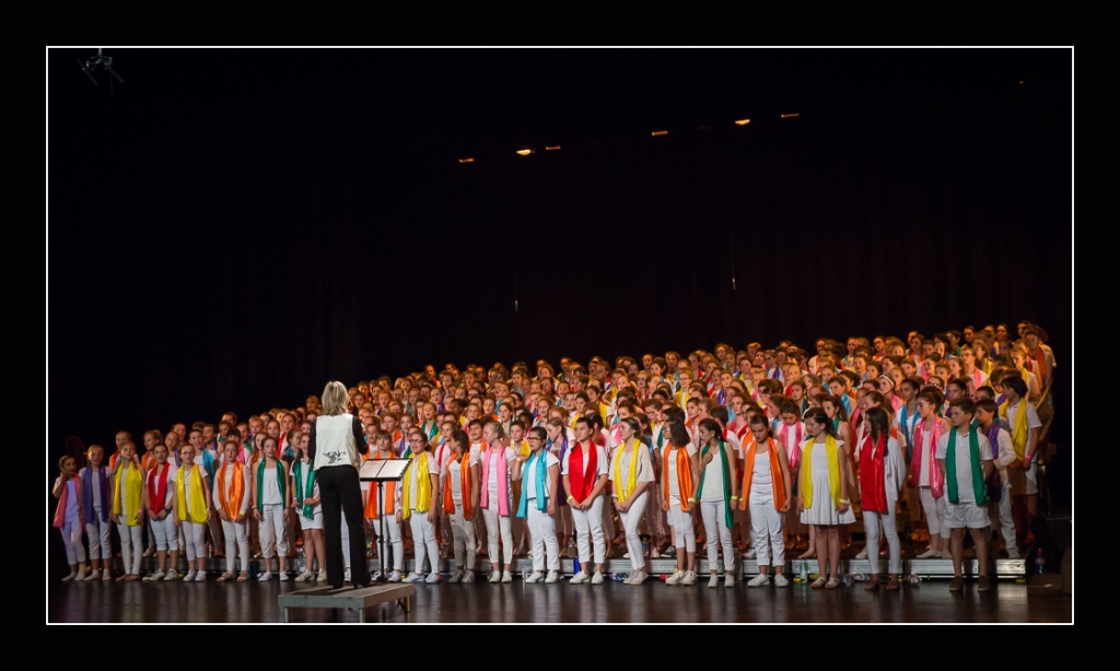spectacle-concert-quintaou-2016-38