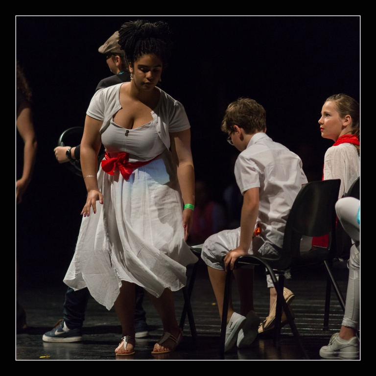 spectacle-concert-quintaou-2016-45