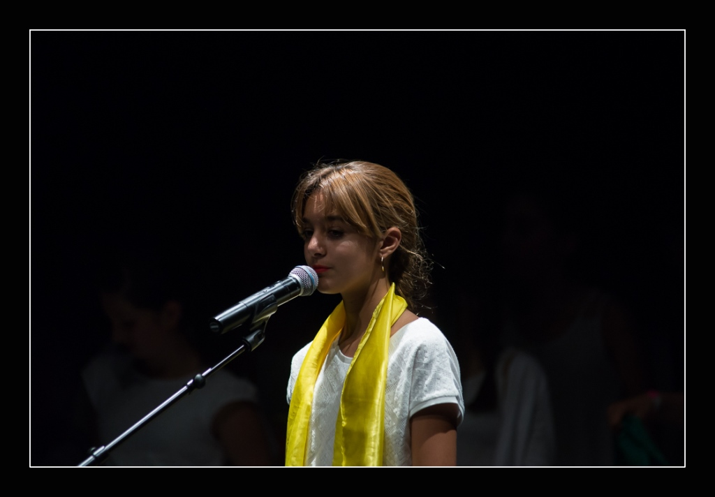spectacle-concert-quintaou-2016-70