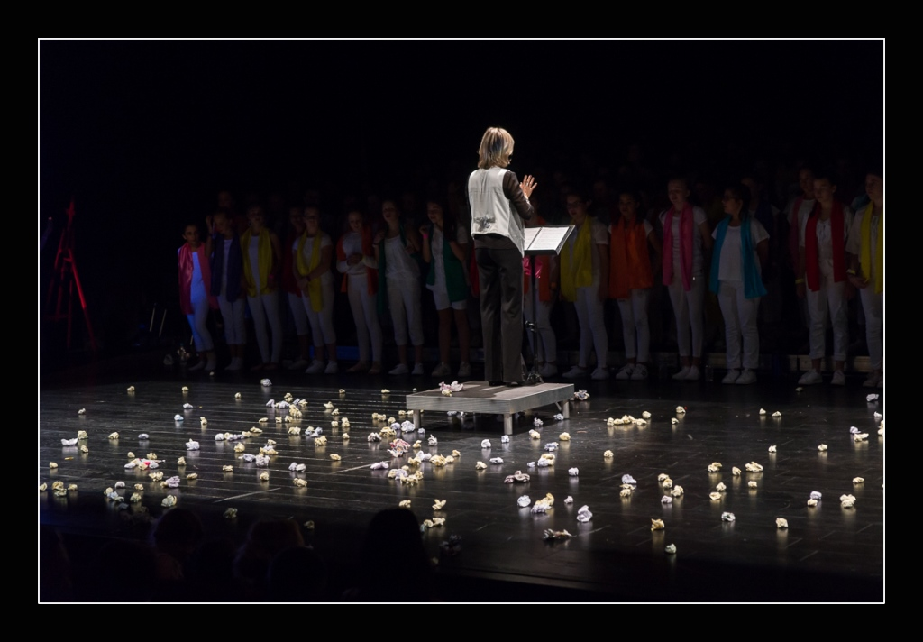 spectacle-concert-quintaou-2016-84