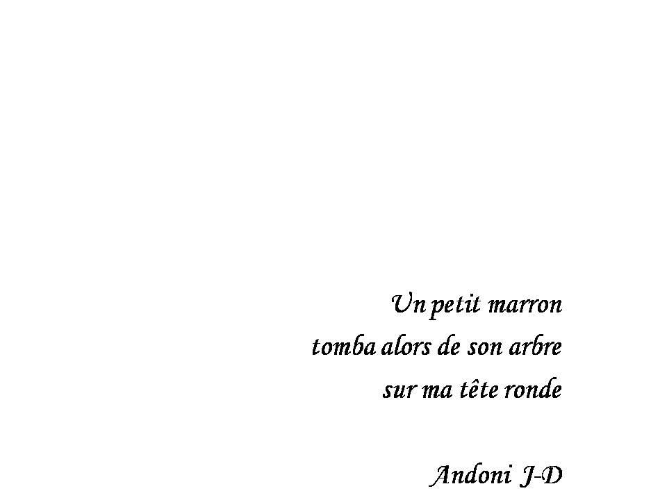 Andoni JD