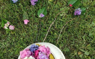 Land Art : « Un brin de beauté » dans les jardins du collège !